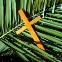 Palm-Sunday-250x250